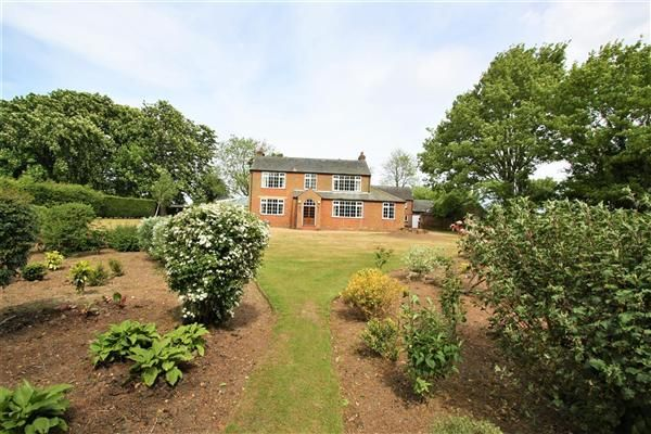 Thumbnail Detached house to rent in Highfields, Kirtling Road, Saxon Street, Newmarket