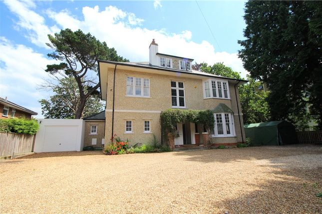 Thumbnail Detached House For Sale In Meyrick Park Bournemouth Dorset