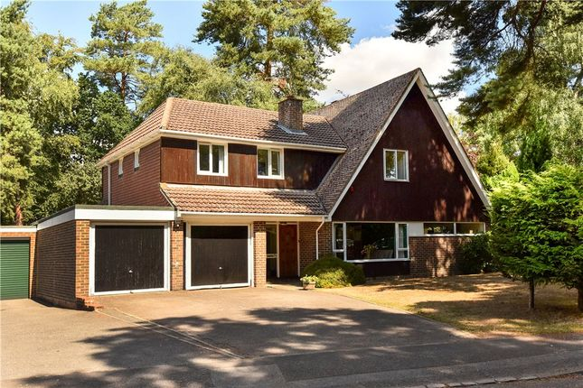Thumbnail Detached house for sale in Edgcumbe Park Drive, Crowthorne, Berkshire