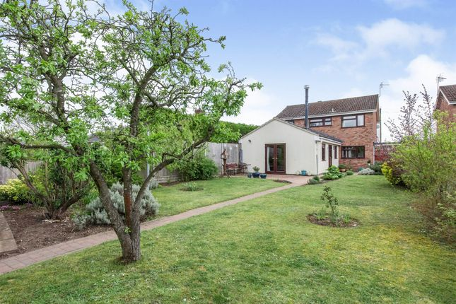 Thumbnail Detached house for sale in Junction Road, Mildenhall, Bury St. Edmunds