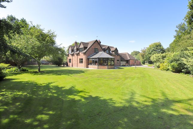 Thumbnail Detached house for sale in Bashley Cross Road, Bashley, New Milton, Hampshire