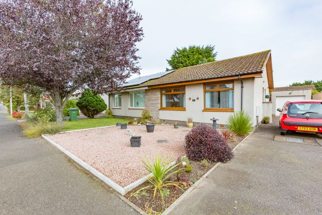 Thumbnail 2 bed semi-detached bungalow for sale in Tolmount Crescent, Montrose