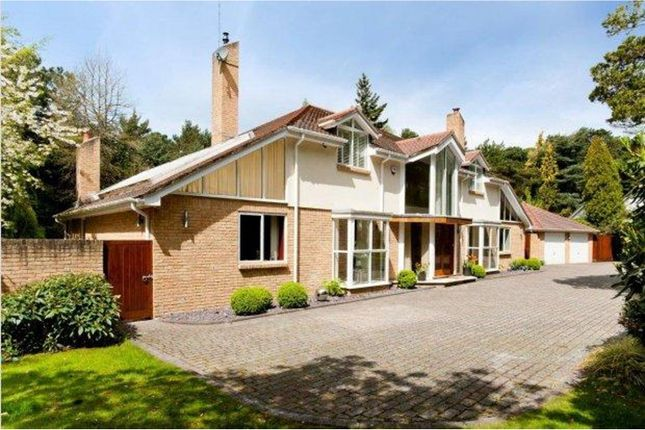 Thumbnail Detached house for sale in Bury Road, Poole