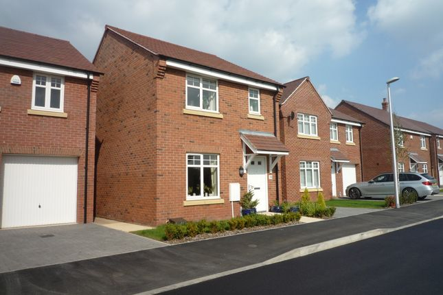 Thumbnail Detached house to rent in Cowslip Road, Stratford On Avon
