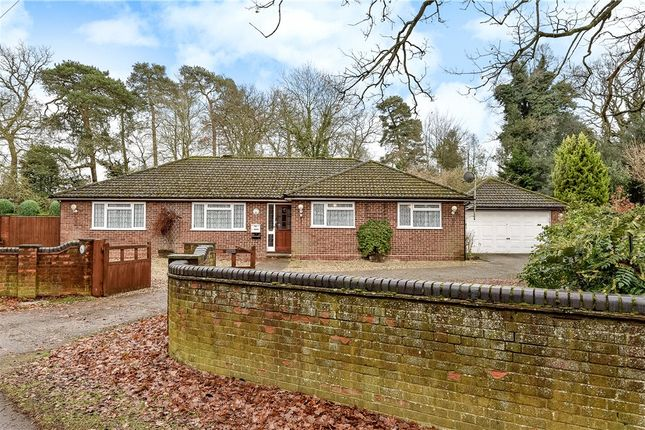 Thumbnail Detached bungalow for sale in The Street, Crookham Village, Fleet