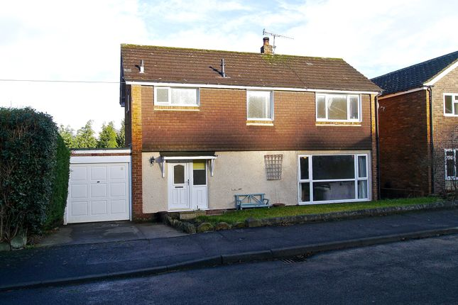 Thumbnail Detached house for sale in Monks Meadows, Hexham