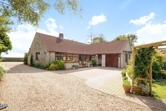 Thumbnail Detached bungalow for sale in Mutton Street, Marshwood, Bridport
