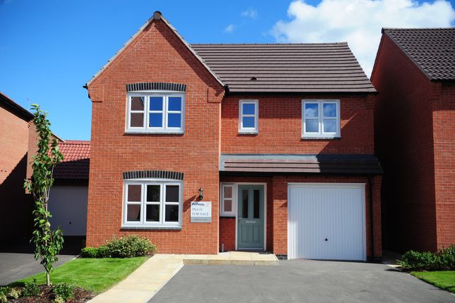Thumbnail Detached house for sale in Fellow Lands Way, Chellaston