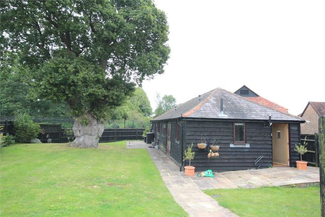Thumbnail Property to rent in Haxted Road, Haxted, Kent