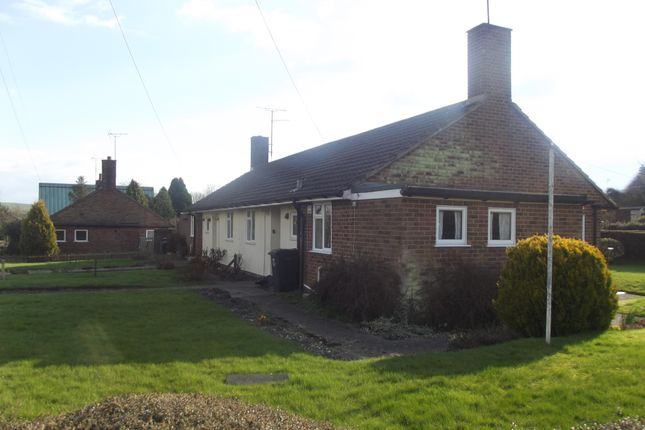 Thumbnail Bungalow to rent in Broadfields, Pewsey