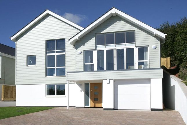 Thumbnail Detached house for sale in Picket Head Hill, Shaldon, Devon