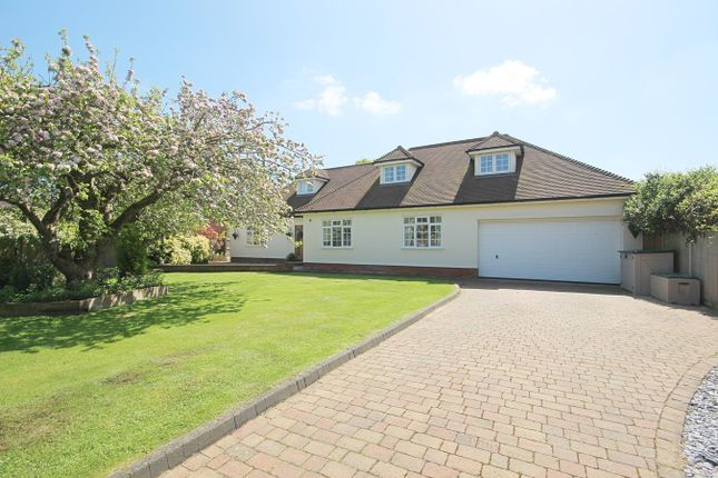 Thumbnail Detached house for sale in New Road, Rayne, Braintree