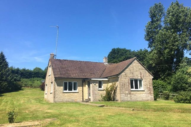 Thumbnail Bungalow to rent in Compton Abbas, Shaftesbury, Dorset