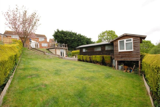 Thumbnail Semi-detached house for sale in Acorn Avenue, Halstead, Essex