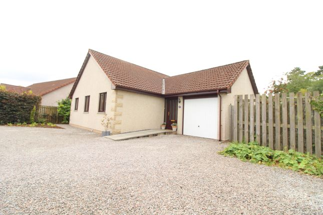 Thumbnail Bungalow for sale in Mount Eagle Court, Culbokie, Dingwall
