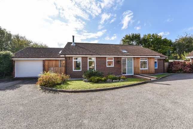 Thumbnail Detached bungalow for sale in Long Down, Petersfield