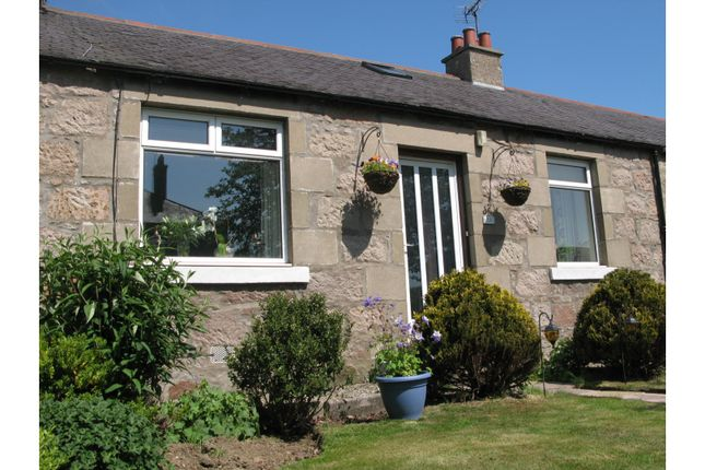 Thumbnail Terraced bungalow for sale in Middlemuir Road, Inverurie