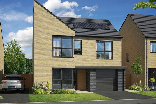 "Thumbnail Detached house for sale in ""The Birch"" at Mount Ridge, Birtley, Chester Le Street"