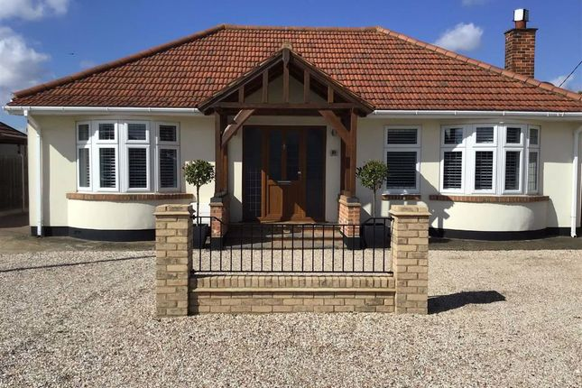 Thumbnail Detached bungalow for sale in Balmoral Avenue, Corringham, Essex