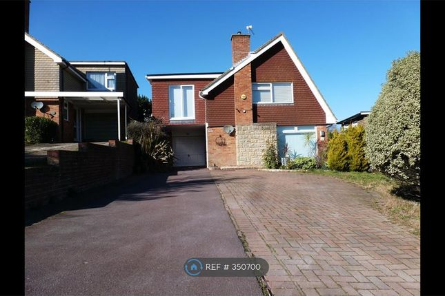 Thumbnail Detached house to rent in Rodmill Drive, Eastbourne