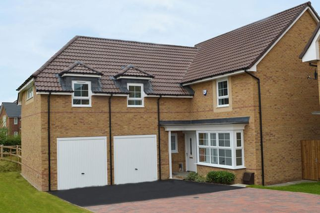 "Thumbnail Detached house for sale in ""Rothbury 1"" at Gold Furlong, Marston Moretaine, Bedford"