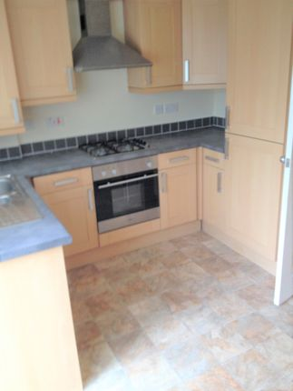 Thumbnail Semi-detached house to rent in Beech Lea, Thurnscoe