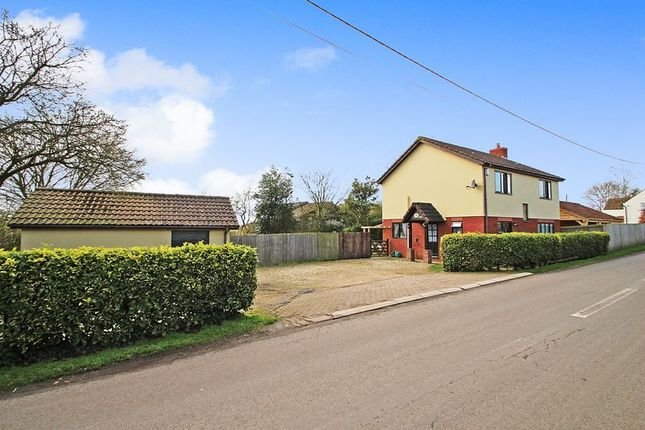 Thumbnail Detached house for sale in Burtle, Bridgwater