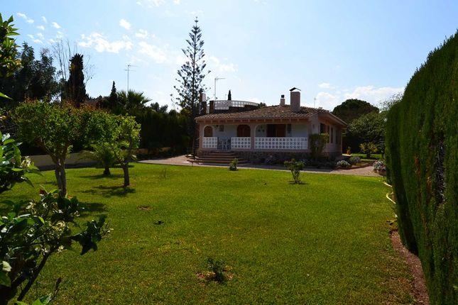 Garden Ras18-669 of L'alter, Picassent, Valencia (Province), Valencia, Spain
