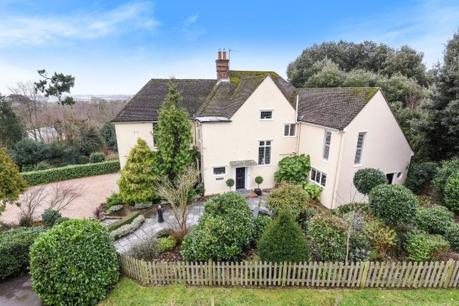 Thumbnail Detached house for sale in Rye Hill, Rye
