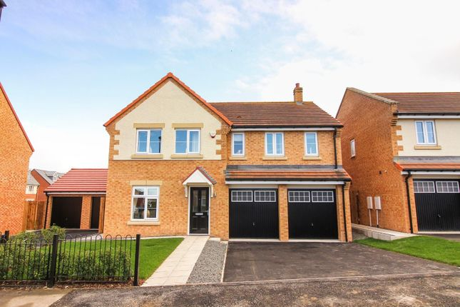 Thumbnail Detached house to rent in Coanwood Drive, Whitley Bay