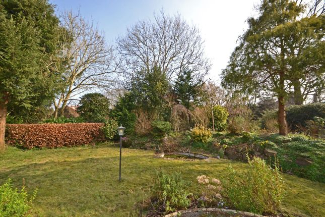 Garden of Church Street, Pulborough, West Sussex RH20