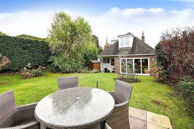 Thumbnail Property for sale in Windmill Hill, Hailsham