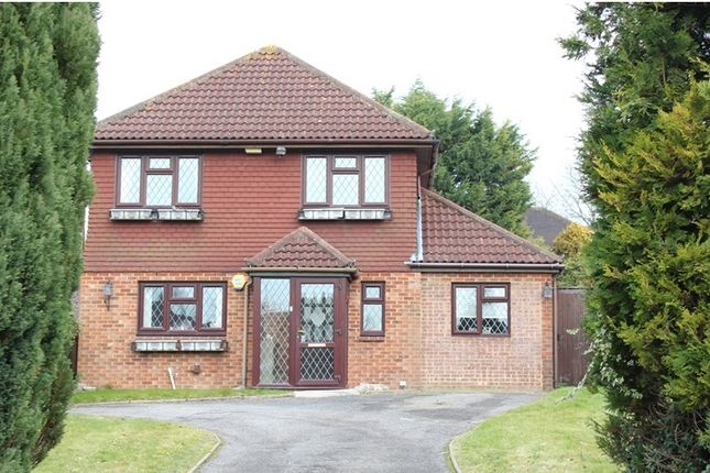 Thumbnail Detached house to rent in Ridge Langley, Sanderstead, South Croydon