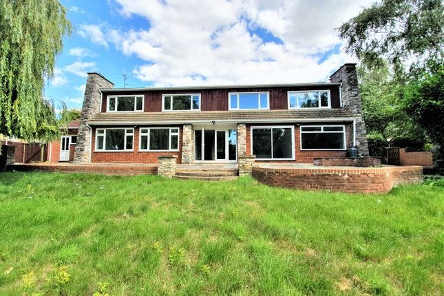 Thumbnail Detached house to rent in Mountfield Road, Luton