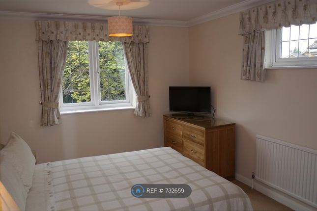 Thumbnail Room to rent in Rideway Close, Camberley
