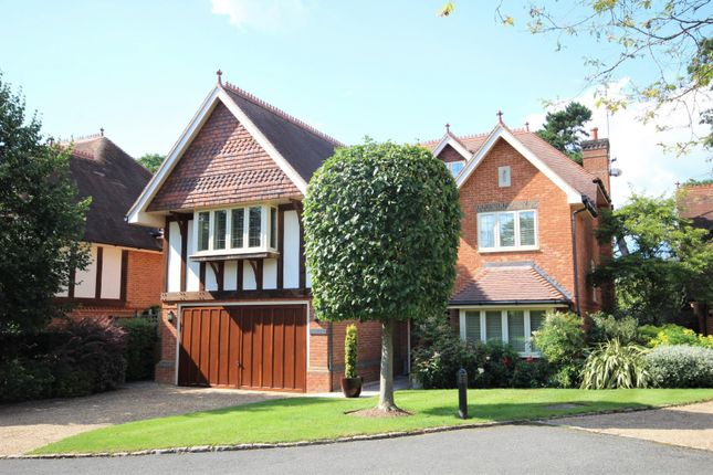 Thumbnail Detached house for sale in Wyatt Close, Wargrave, Reading