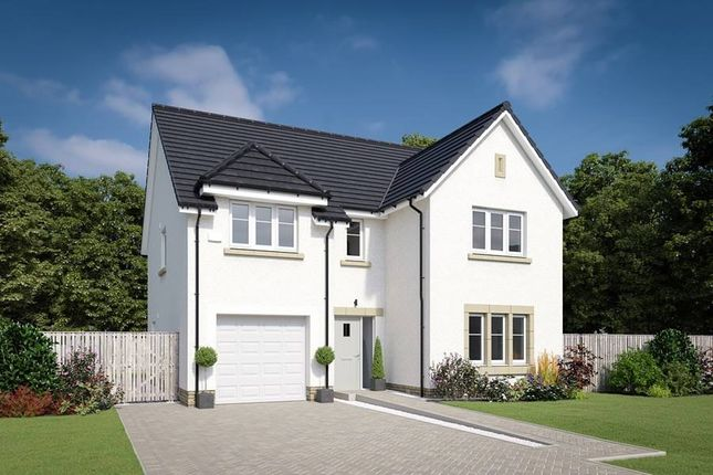 "Thumbnail Property for sale in ""The Colville"" at Willow Park Drive, Penicuik"