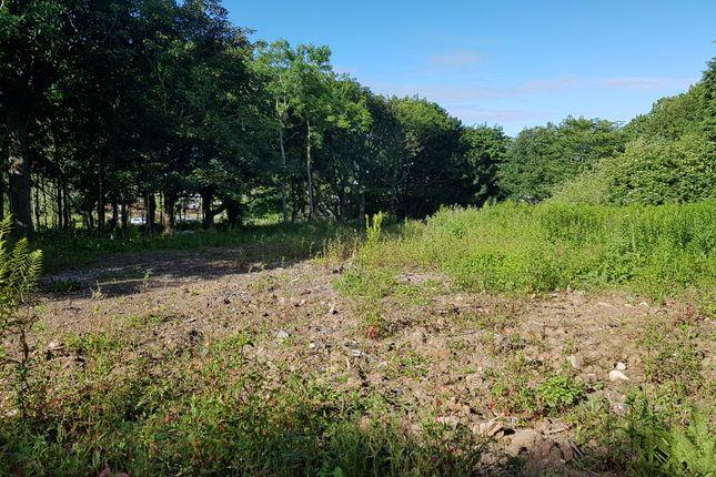 Thumbnail Land for sale in Longside, Peterhead
