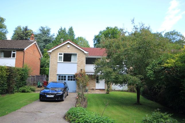 Thumbnail Detached house to rent in Westonbirt Drive, Caversham, Reading