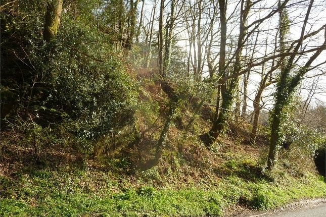 Land for sale in 0.82 Acres Or Thereabouts Of Woodland, (Formerly Part Of Streamside, 2 Pendre), Felindre Farchog, Crymych, Pembrokeshire