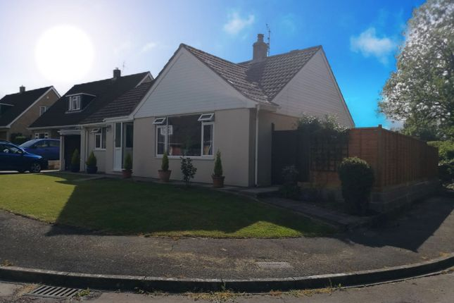 3 bed detached bungalow for sale in Oxhayes, Drimpton, Beaminster DT8
