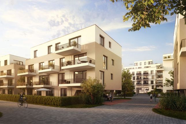 First single apartment gmbh greifswald