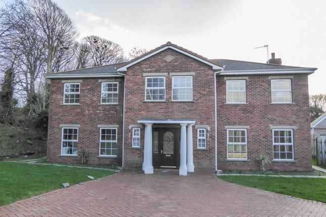 Thumbnail Detached house to rent in Glen Darragh Gardens, Glen Darragh Road, Glen Vine