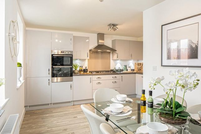 "Thumbnail Semi-detached house for sale in ""Leeman"" at Fetlock Drive, Newbury"