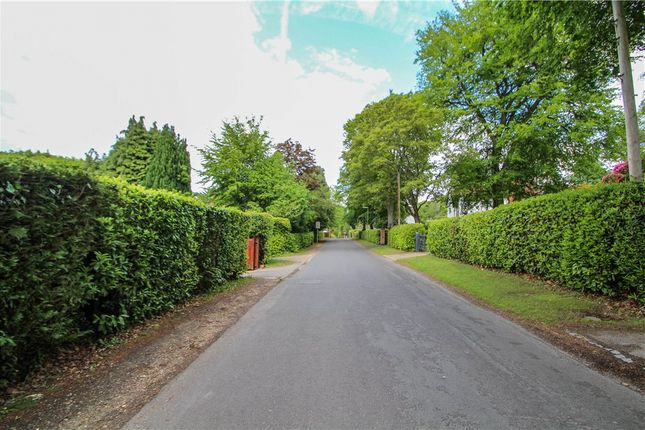 Picture No. 09 of Middleton Road, Camberley, Surrey GU15