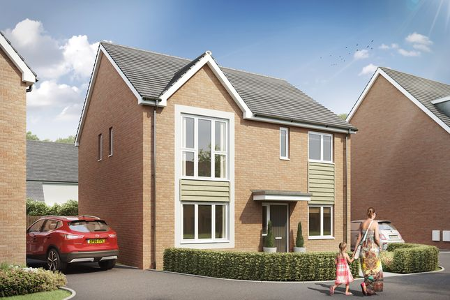 Thumbnail Detached house for sale in Hilton Valley, Hilton, Derby