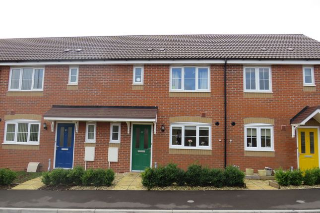 Thumbnail Terraced house for sale in Pyrland Fields, Taunton