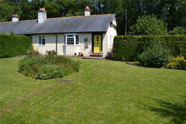 Thumbnail Bungalow for sale in Tregerddi, Llandinam, Powys
