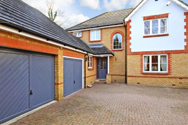 Thumbnail Detached house for sale in Little Brook Road, Roydon, Harlow, Essex
