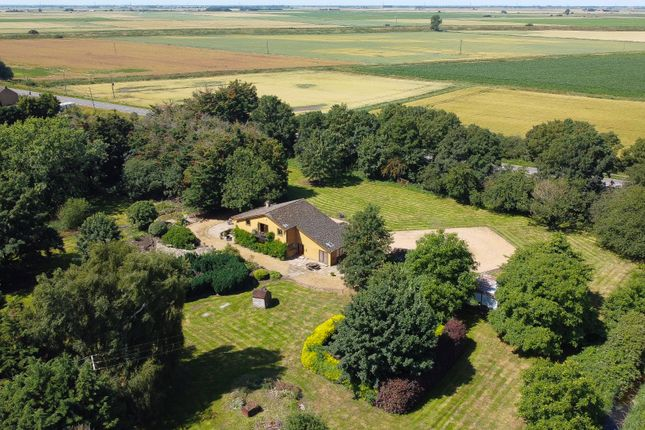 Thumbnail Detached house for sale in Mill Drove, Southery, Downham Market